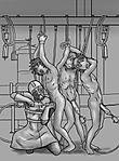 milking64.jpg